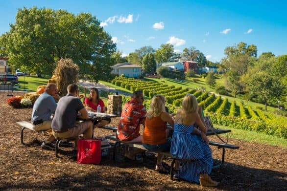People having a picnic at Stone Hill Winery in Hermann, Mo.