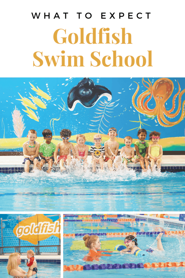 What to expect at Goldfish Swim School - A look at class size, the tropical decor, and the perks of having a membership #GoldfishSwimSchool #Omaha #swimming