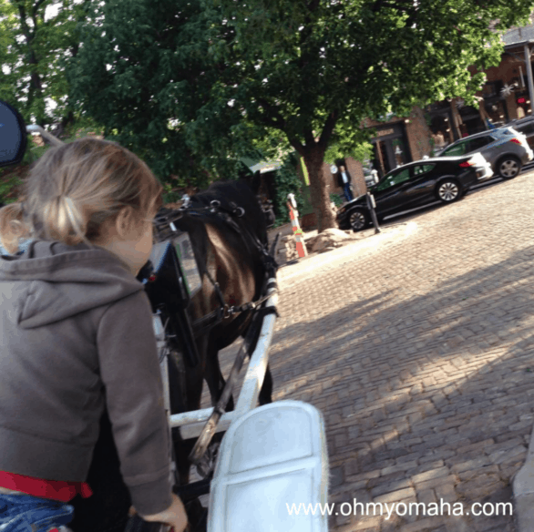 Omaha Old Market carriage rides aren't free but seeing the horses and petting them are.