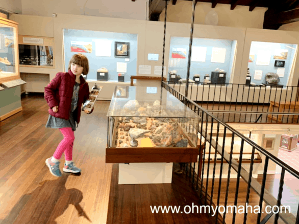 Museums near Carmel - Pacific Grove Museum of Natural History