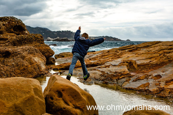Things To Do At Point Lobos With Kids