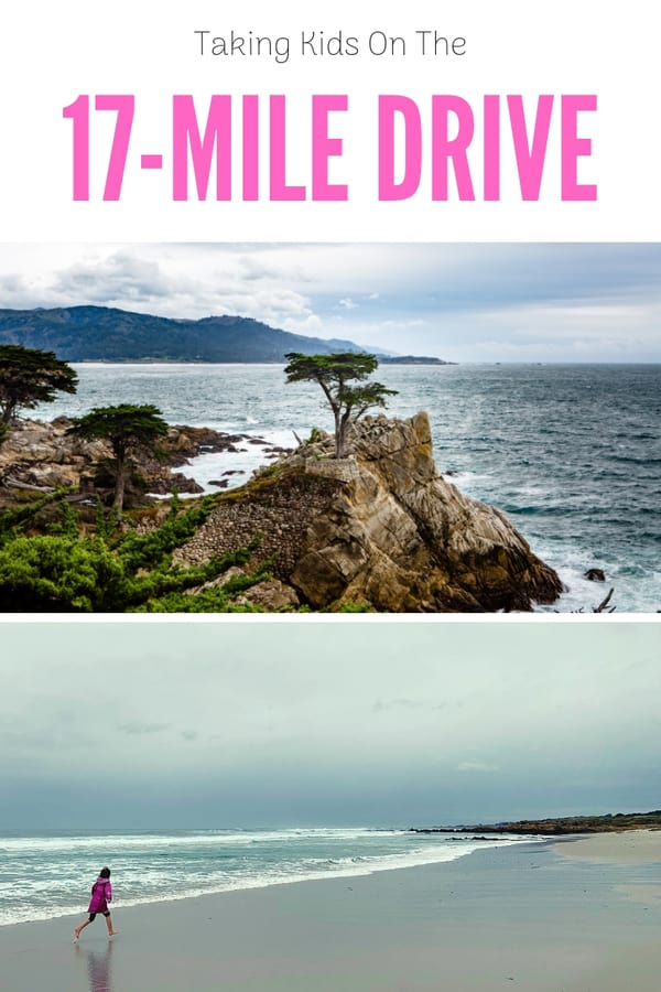 What to expect on the 17-Mile Drive in California | Find out if it's worth the admission fee and what stops kids will like the most. #California #PebbleBeach #familytravel