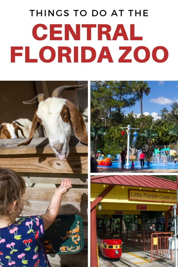 Things to do at the Central Florida Zoo, the closest zoo to Orlando! Learn about the animal encounters, zip line course for kids, and more. #familytravel #Florida