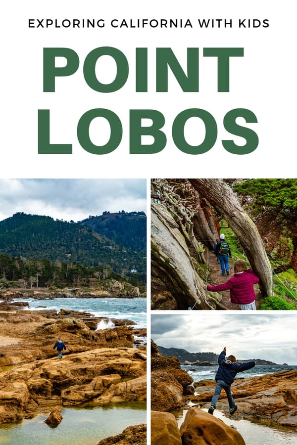 Guide to taking kids to Point Lobos, the crown jewel of the California state park system - Kid-friendly trails, exploring the tide pools and more helpful information to plan a visit #familytravel #hiking #outdoors