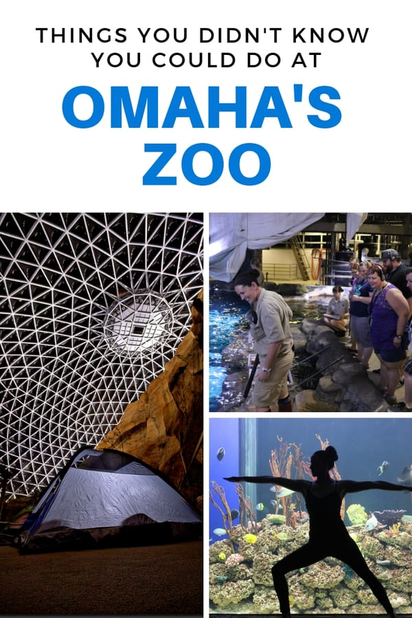 Get the scoop on all the tours, animal encounters and camping opportunities available at the Omaha zoo! #Nebraska #familytravel #USA
