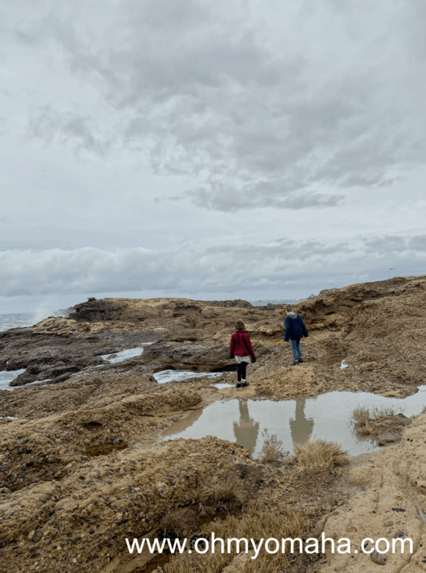 Things to do at Point Lobos State Natural Park in California - Explore tide pools