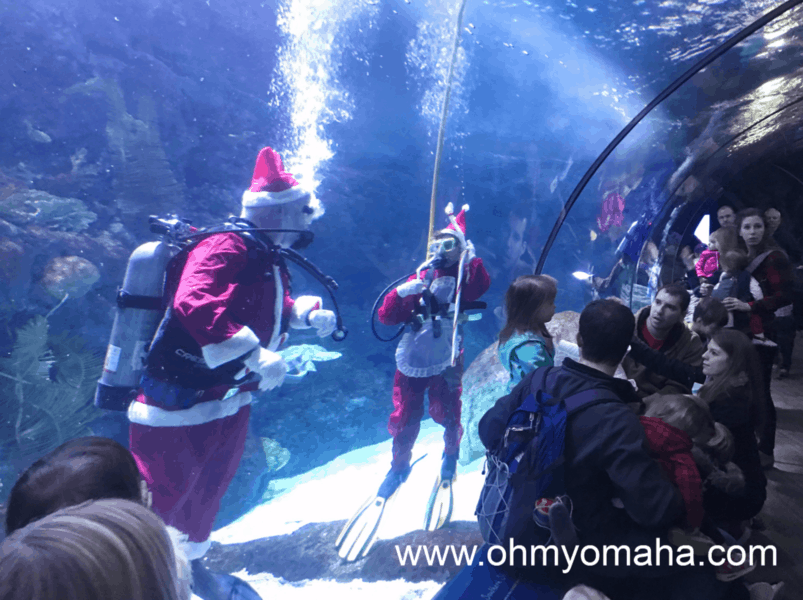 Scuba diving Santa and Mrs. Claus at Omaha's zoo.