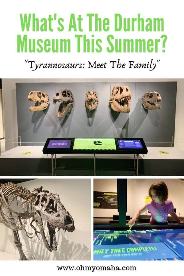 "Looking for fun things to do in Omaha this summer? Check out the summer exhibit at The Durham Museum - ""Tyrannosaurs: Meet The Family""! Get details on the exhibit, when to see, and the kids activities inspired by the exhibit. #Omaha #Nebraska #museums"