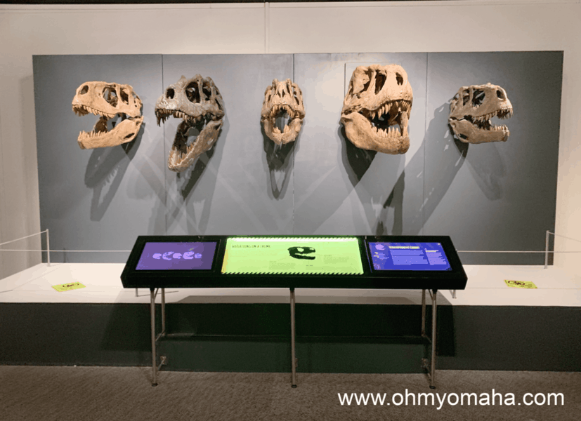 Tyrannosaurs: Meet The Family - The 2019 summer exhibit at The Durham Museum has special events planned throughout the exhibit's run.