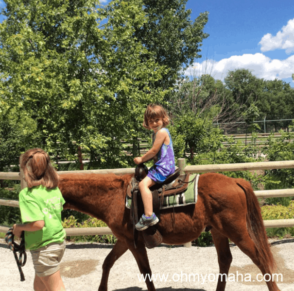 Favorite things to do at Lincoln Children's Zoo - pony rides