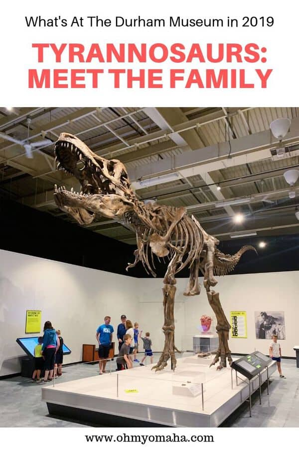 "Planning a trip to Omaha this summer? See what special exhibit is on display at The Durham Museum! In the summer of 2019, the exhibit is ""Tyrannosaurs: Meet The Family."" Get the scoop on special events planned for the exhibit plus what things kids will like there. #Omaha #Nebraska #FamilyTravel"