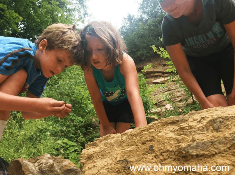 Things to do in outdoors in Nebraska - Look for fossils at Schramm State Recreation Area