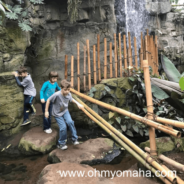 Walking around the indoor rainforest located in Omaha's zoo