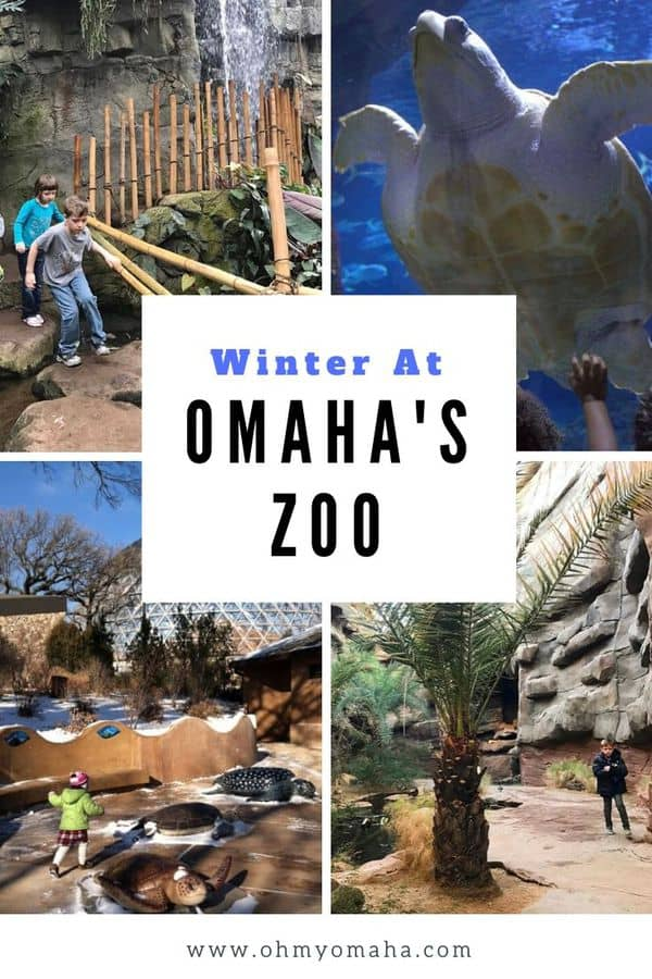 One of the best times to visit Omaha's Henry Doorly Zoo & Aquarium is in the winter! Here are tips on indoor things to see and do during your winter zoo visit. #Omaha #Nebraska #zoo #Midwest