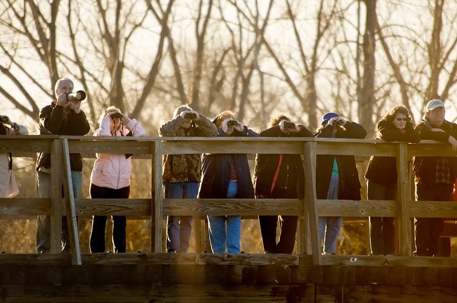 Crane watching on the hike bike bridge at Fort Kearny State Park in Kearney, Nebraska