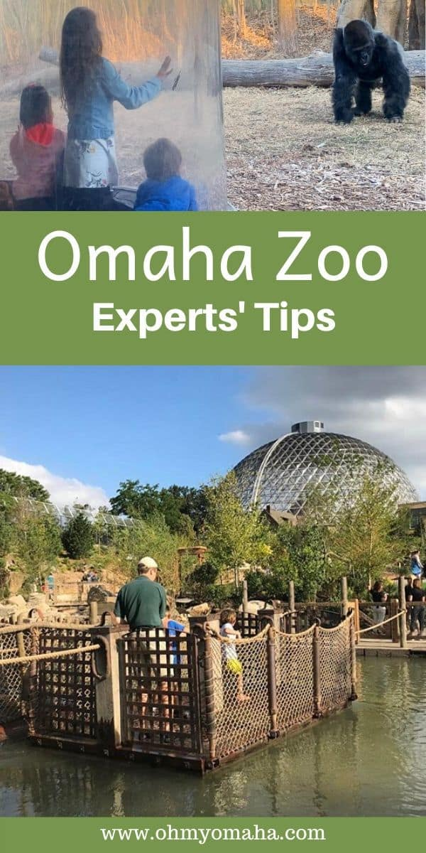 Tips for visiting Omaha's zoo - Locals share their tips for visiting the zoo in Omaha, from saving money to renting strollers to finding the best time to visit the zoo. Post also includes the newest exhibits and what's planned for future exhibits. #Omaha #Nebraska #USA #zoos #Tips