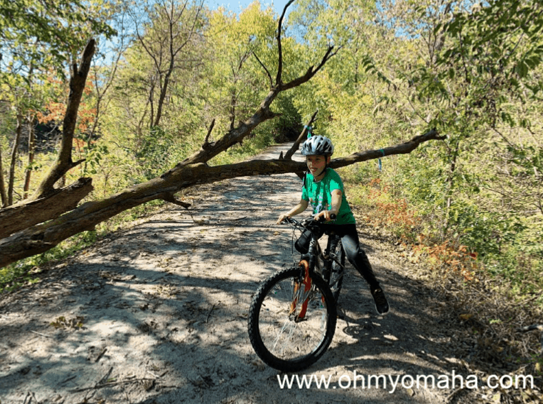 A fallen tree blocks the path on the Wabash Trace Trail in southwest Iowa