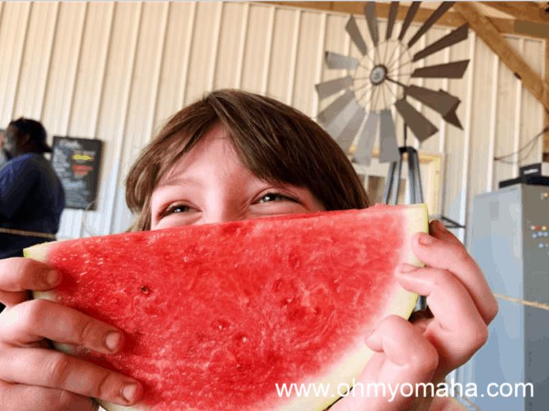 Looking For A Farm Near Omaha? Check Out Nelson Produce Farm