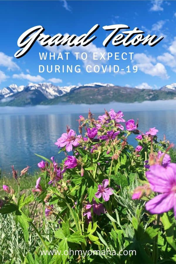 Everything you need to know about visiting Grand Teton National Park in 2020   What are the COVID-19 safety protocols at Grand Teton National Park   What's open and what is closed during the 2020 pandemic
