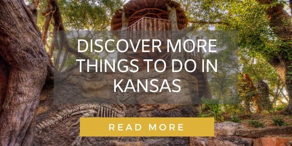 Button to more Kansas stories
