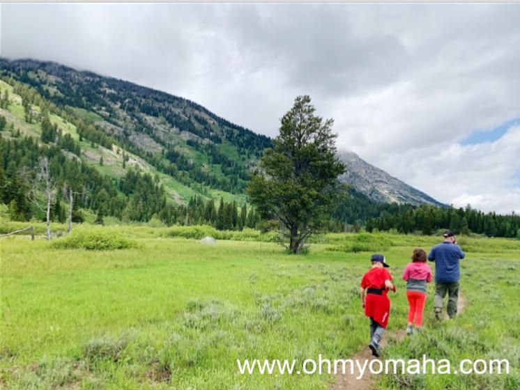Open field at Grand Teton National Park