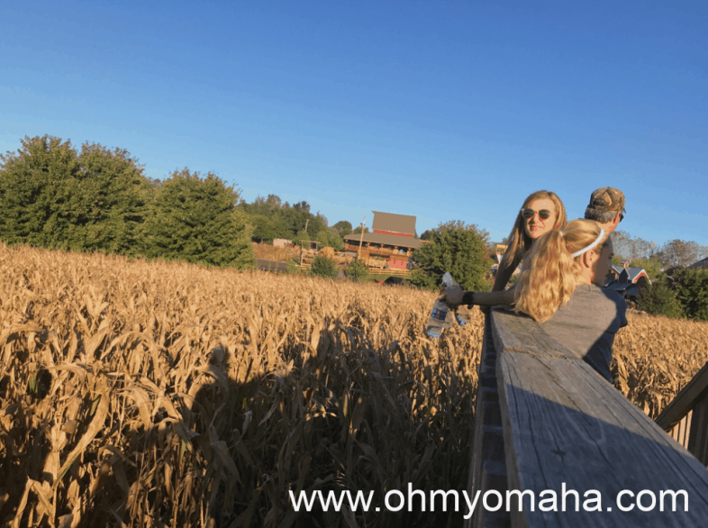 Family using the lookout platform to find a way out of Vala's corn maze