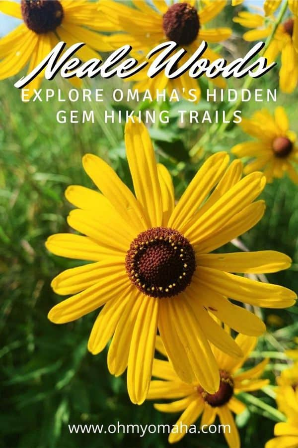 Omaha has an off-the-beaten hiking spot called Neale Woods. Get details on the trails -- both prairie and woodland trails -- as well as a recommended hike. #Nebraska #Midwest #Outdoors #Hikes