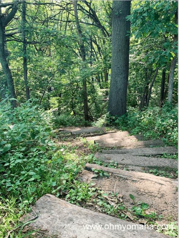 Steps at Owl Trail at Neale Woods in Omaha, Nebraska