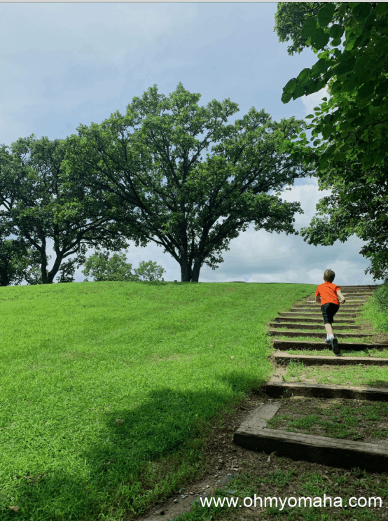 The short path up to the scenic overlook at Waubonsie State Park