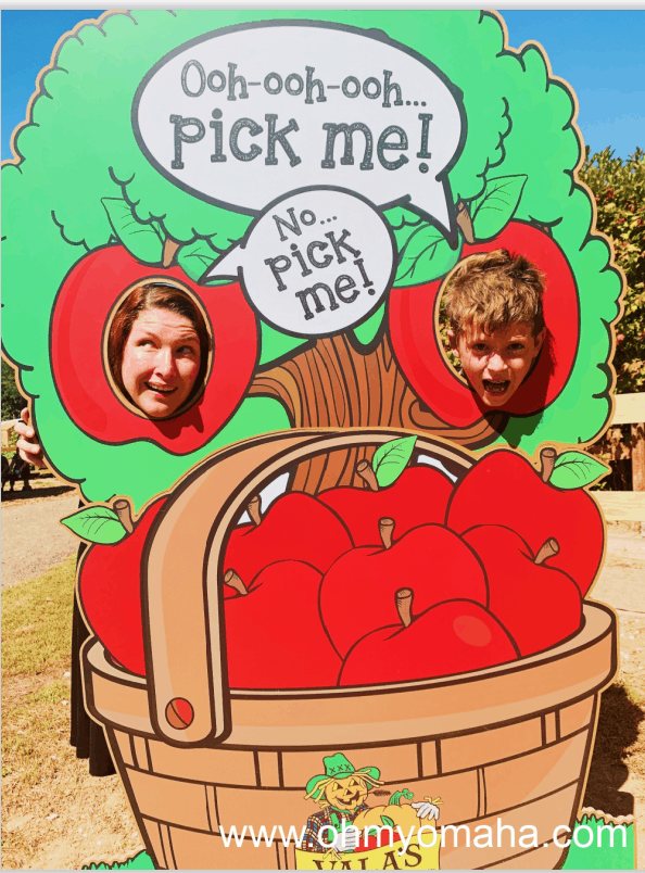 Silly picture at Vala's Pumpkin Patch and Orchard.