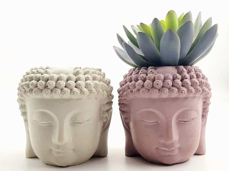 Succulent planters made by Omaha maker Consider Concrete