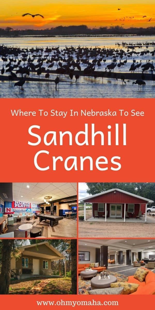 It's a once-in-a-lifetime experience seeing a half million Sandhill Cranes as they migrate through Nebraska. But you'll need a place to stay if you're going have the best viewing in the morning! Here are the top reviewed hotels in Kearney and North Platte, two popular cities near prime crane viewing sites.