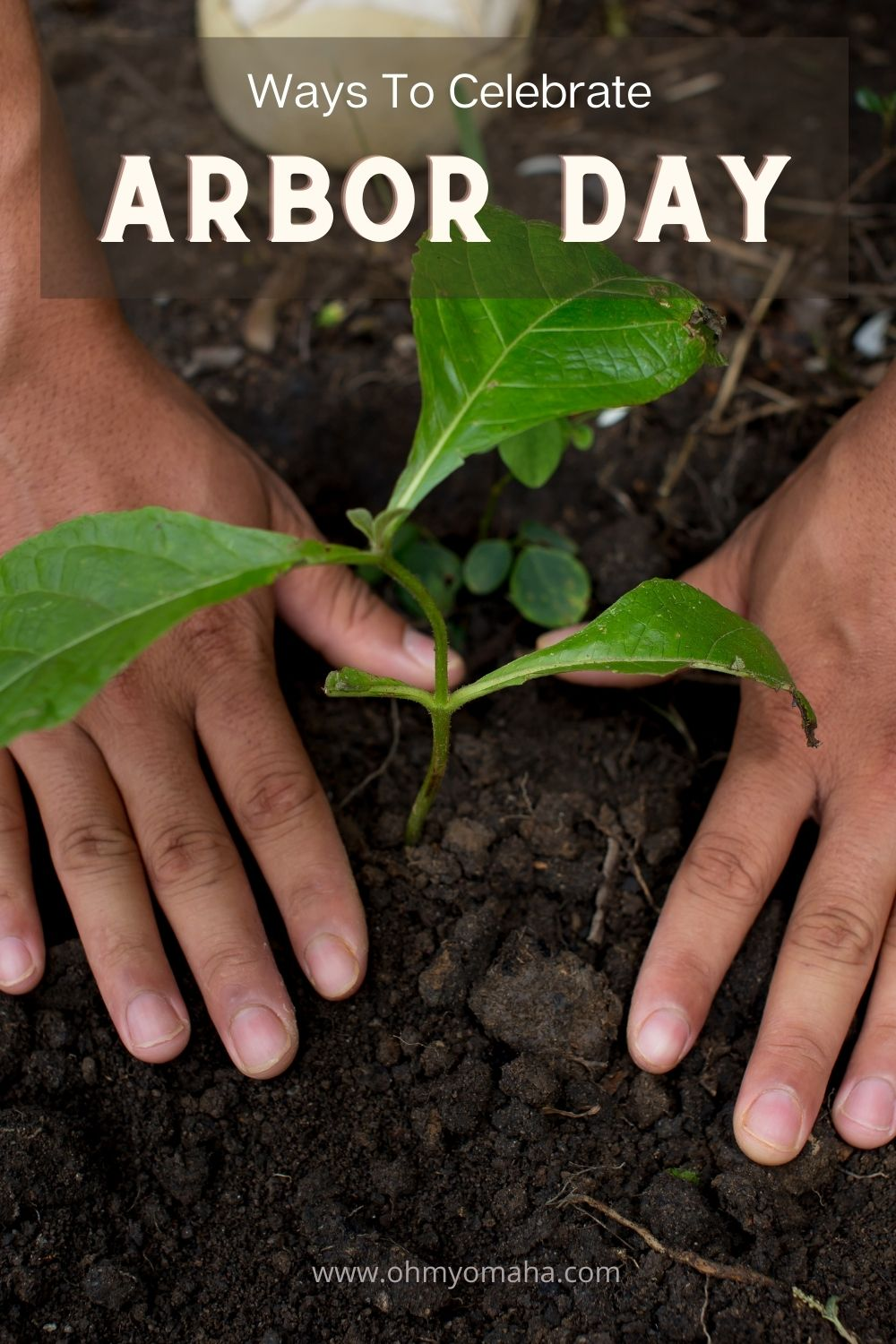 10+ ways to celebrate Arbor Day! Learn what Arbor Day is all about, see how they celebrate it where the holiday originated (in Nebraska), and find activities to do have your own celebration.
