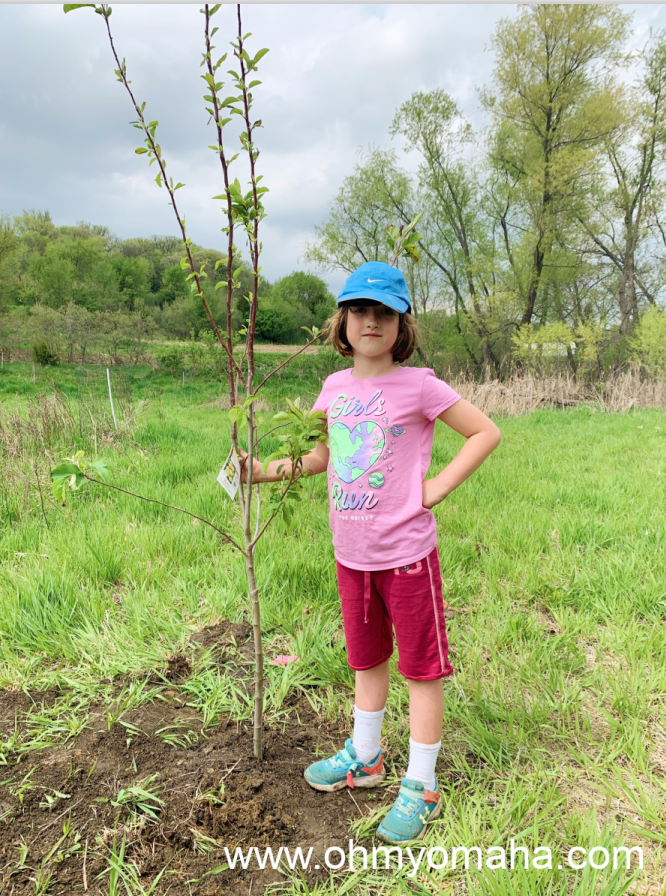 My daughter standing next to a tree she helped plant at my dad's tree farm in Iowa.