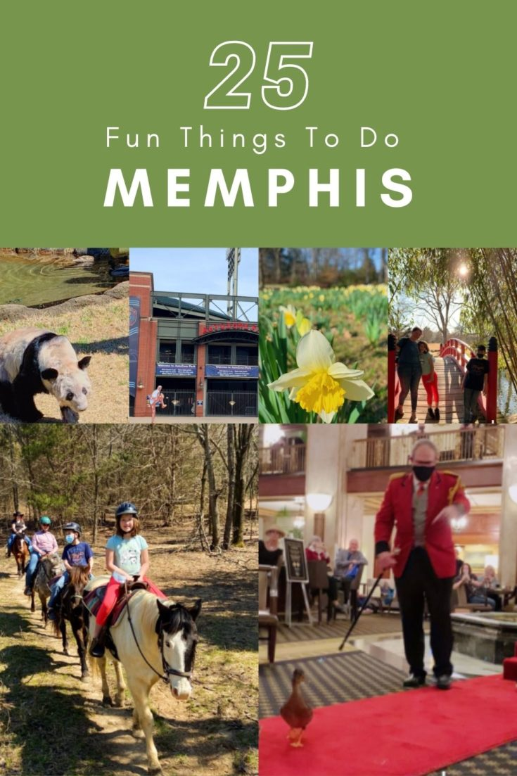 A huge list of things to do in Memphis with kids - including free things to do in Memphis and the top family-friendly attractions in the city.