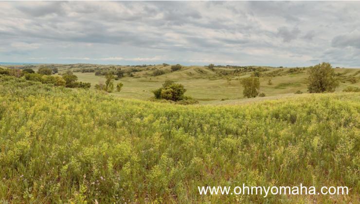 Broken Kettle Grasslands in the Loess Hills of northwestern Iowa