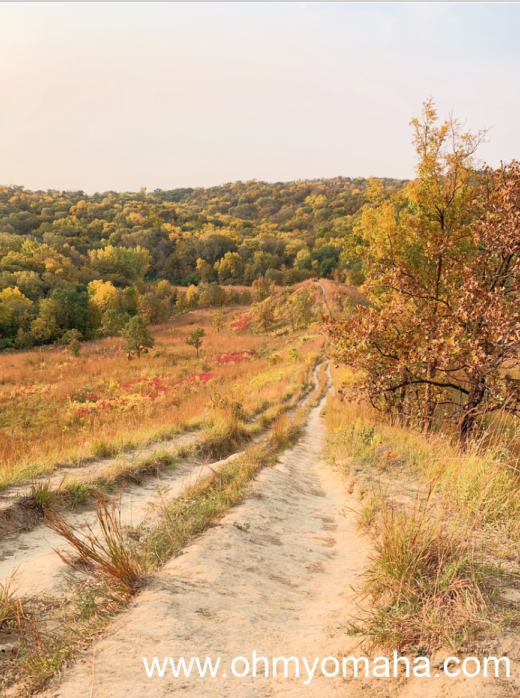 A trail at Hitchcock Nature Center in Honey Creek, Iowa