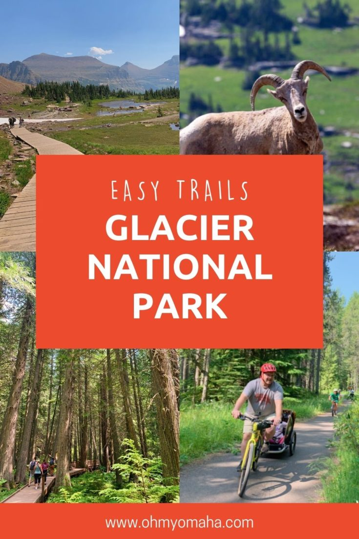 10+ easy trails for hiking and biking in Glacier National Park, plus tips on where to see wildlife like bighorn sheep and mountain goats.